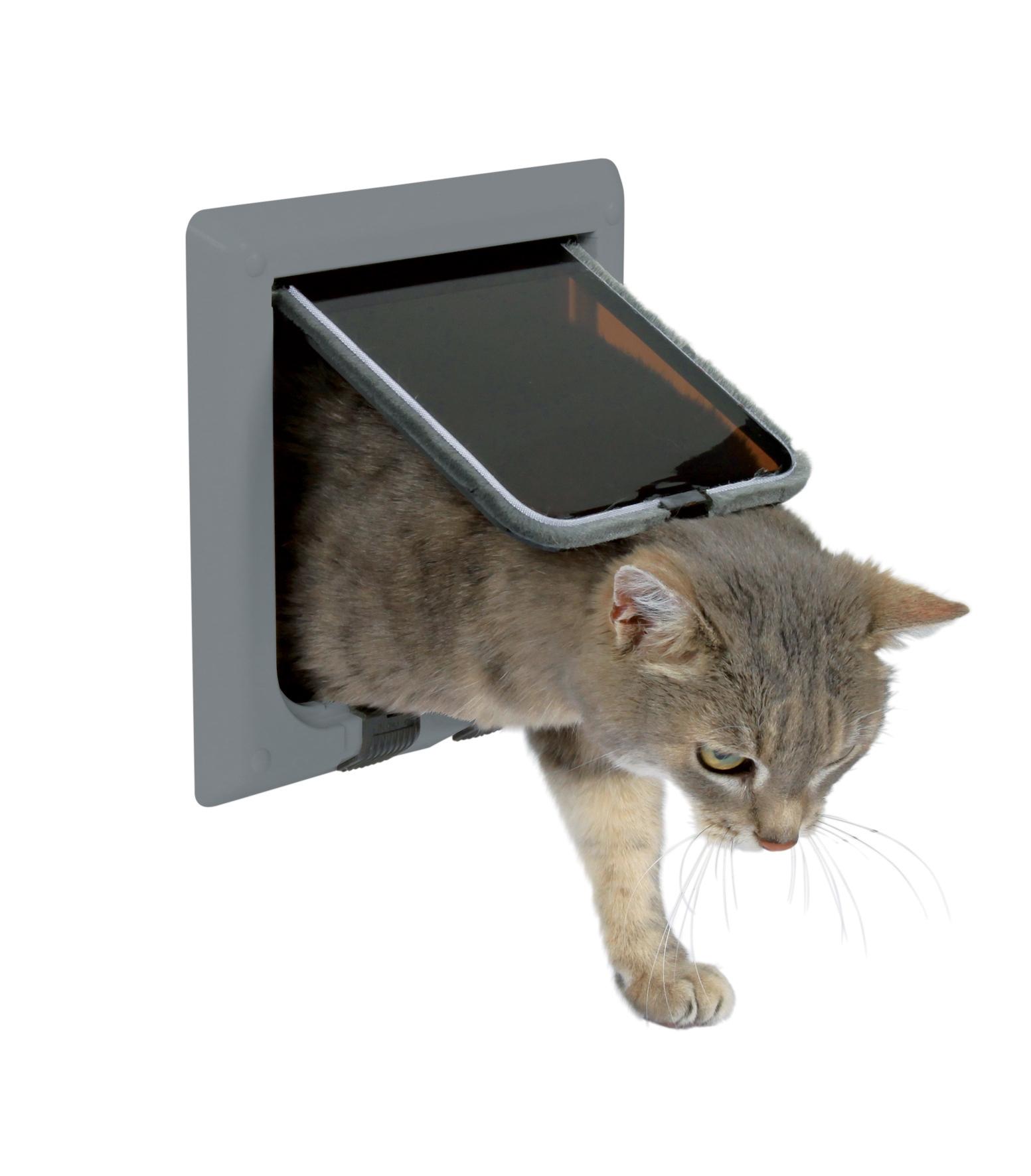 Дверь для кошки : своими руками или готовый вариант? Ваши Питомцы 92