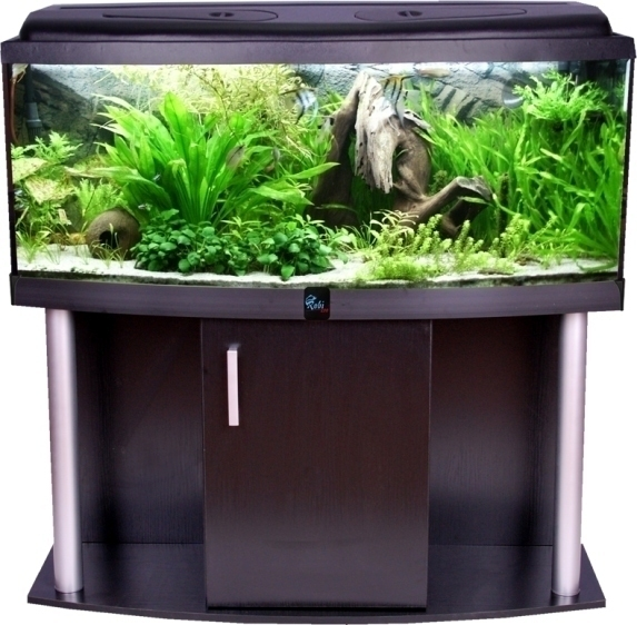 Zestaw 120x40x50 ap comfort czarna z akcesoriami for Amazon fish tanks for sale