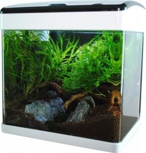 Akwarium 32L LED, gięte szkło, filtr + oświetlenie, białe + czarna ramka